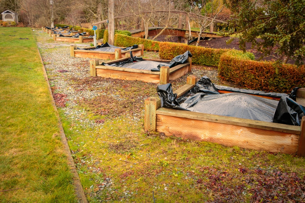 Raised Bed Planters