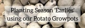 Using the Potato Growpot to plant season 'Earlies'